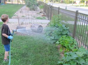 Task #1: Watering