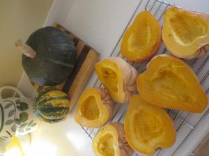 Big Green Pumpkin & Heart-shaped Squash