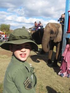 Medieval Elephant Rides?