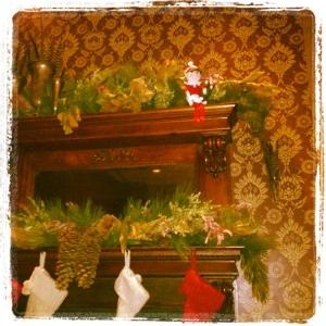 Elf on Wilde Roast's Shelf