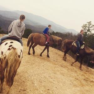 Horseback Vista